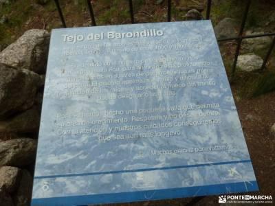 Tejos Rascafría-Valhondillo o Barondillo;la provenza albacete yacimiento de numancia las chorreras